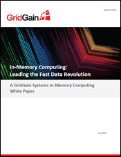 In-Memory Computing: Leading the Fast Data Revolution